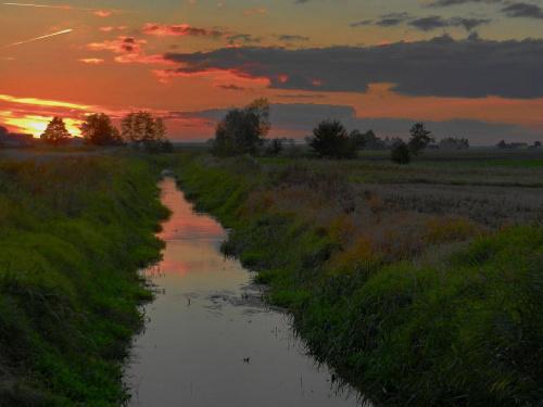 poszło się po rosie hej ! #wschód #zachód #łaka #kanał