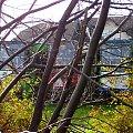 Widok z DK10 #cmentarz #lubicz #toruń #tramwaje