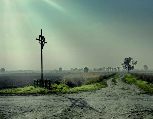 Czasem jakieś serce, nawet bardzo ci sprzyjające, kładzie się cieniem na twej drodze. Nie zdepcz go... #pole #krzyż #rozstaje