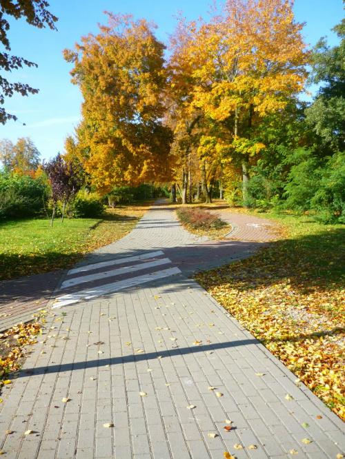 ach nie ma to jak jesień ;)