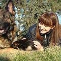 Ursus 7 tygodni #OwczarekNiemiecki #pies #szczeniak