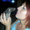 #Myszka #Myszolajda #Szczur