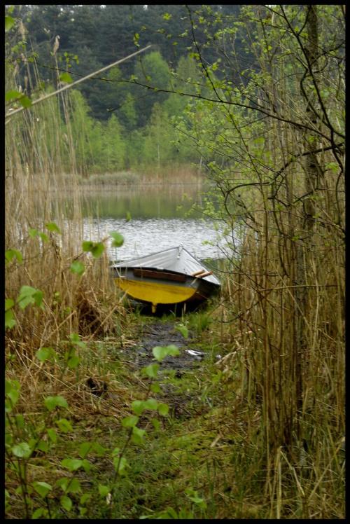 images64.fotosik.pl/913/e663e162bfce2b0cmed.jpg